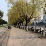 Anonymous Confessions: Being Single in Ningbo